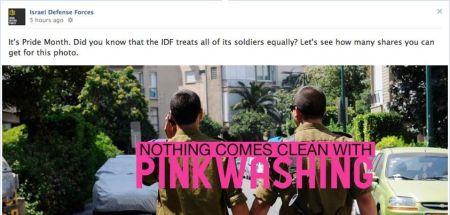 Image 9 - IDF Pinkwashing